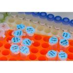 七海Cell Cycle and Apoptosis Analysis Kit 细胞周期与凋亡检测试剂盒