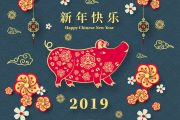 2019-year-of-pig