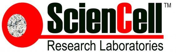 美国Sciencell细胞检测试剂盒